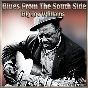 Blues From The South Side