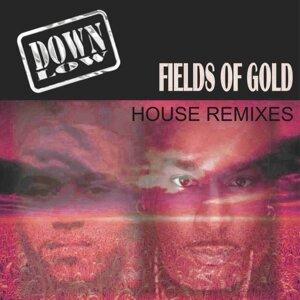 Fields of Gold (Remixes)