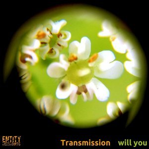 Will You - Single