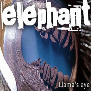 Llama's Eye