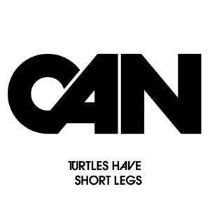 Turtles Have Short Legs