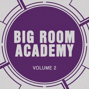 Big Room Academy, Vol. 2