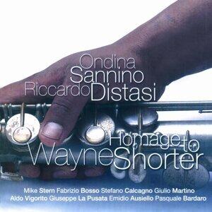 Homage to Wayne Shorter