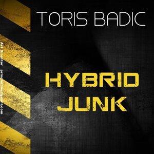 Hybrid Junk