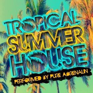 Tropical Summer House