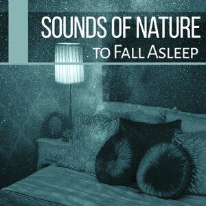 Sounds of Nature to Fall Asleep – Sleep Music, Lullabies for Deep Sleep, Easy Sleep, Relaxing Music, Pure New Age Relaxation