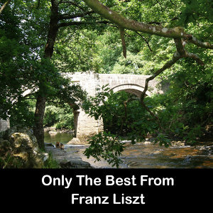 Only The Best From Franz Liszt