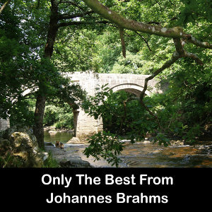 Only The Best From Johannes Brahms