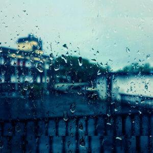 Rain Sounds for Meditation: Compilation of Sleep Rain, Insomnia, Focus, Study, Zen and Calming Rain