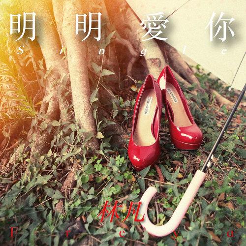 明明愛你 專輯封面