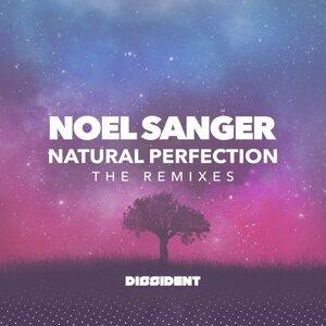 Natural Pefection (The Remixes)
