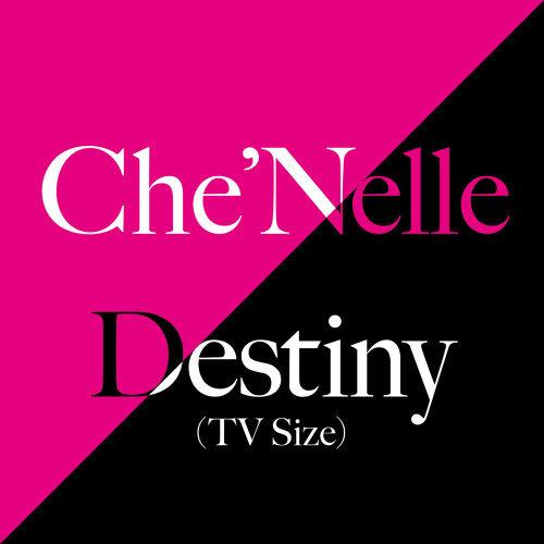 Destiny - TV Size