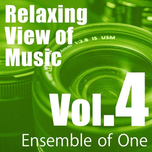 Relaxing View of Music, Vol. 4