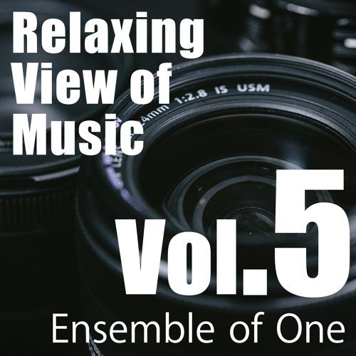 Relaxing View of Music, Vol. 5