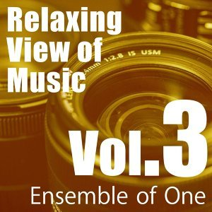 Relaxing View of Music, Vol. 3