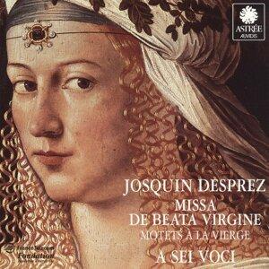 Desprez: Missa de beata virgine, Motets à la Vierge