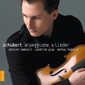 Arpeggione & Lieder