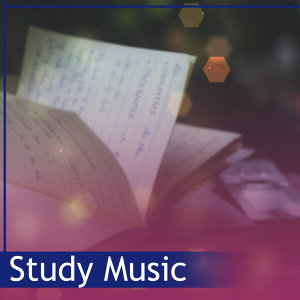 Study Music – Concentration Sounds, Classical Melodies to Work, Mozart, Instrumental Music for Better Memory