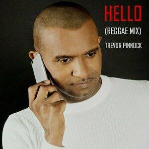 Hello (Reggae Mix)