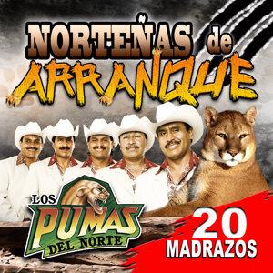 Nortenas De Arranque, 20 Madrazos