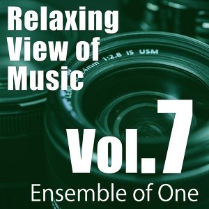 Relaxing View of Music, Vol. 7