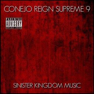 Reign Supreme 9