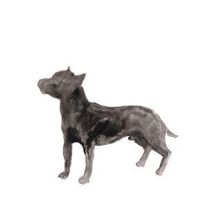 A Dog Called Money / I'll Be Waiting