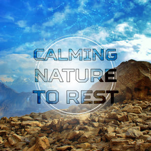 Calming Nature to Rest – Healing Nature, Soft Waves, New Age Therapy