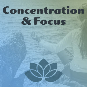 Concentration & Focus – Meditation Music, Yoga Sounds, Pure Mind, Reiki, Calmness, Nature Sounds for Relaxation