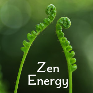 Zen Energy – Contemplation of Nature, Soft Music for Relaxation, Pure Mind, Relief, Relaxing Waves, Inner Tranquility