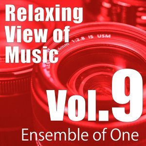 Relaxing View of Music, Vol. 9