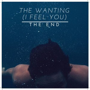 The Wanting (I Feel You)
