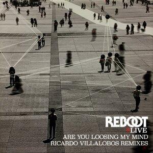 Are You Loosing My Mind - Ricardo Villalobos Remixes