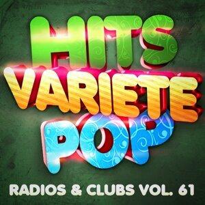 Hits Variété Pop, Vol. 61 (Top radios & clubs)