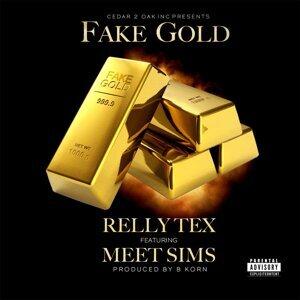 Fake Gold (feat. Meet Sims)