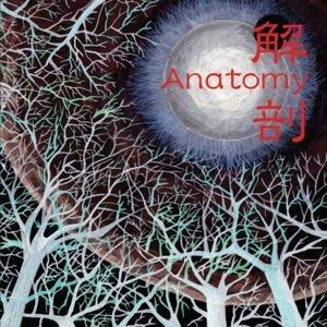 解剖 (KAIBOU)