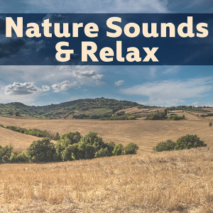 Nature Sounds & Relax – Pure Relaxation, Soothing Music to Calm Down, Healing Water, Relaxing Waves, Ocean Dreams, Peaceful Mind