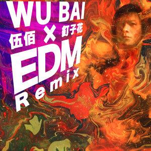 釘子花 - EDM Remix