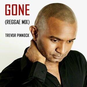 Gone (Reggae Mix)