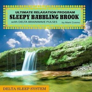 Delta Sleep System: Sleepy Babbling Brook With Delta Brainwave Pulses