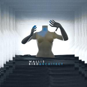 Architect - Deluxe