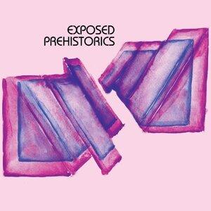 Exposed Prehistorics