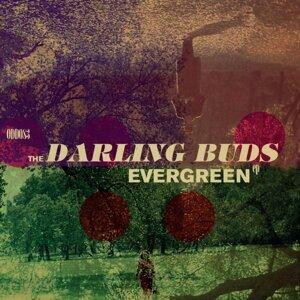 Evergreen - EP