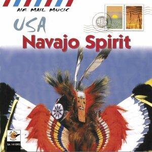 USA Navajo Spirit - Air Mail Music Collection