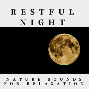 Restful Night Nature Sounds