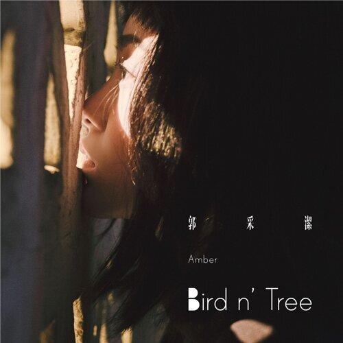 Bird N' Tree