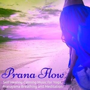 Prana Flow – Self Healing Calming Music for Yoga, Pranayama Breathing and Meditation