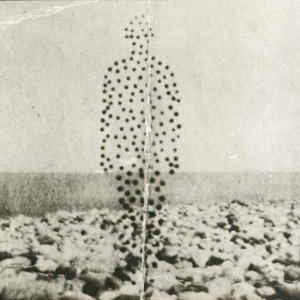Beme Seed