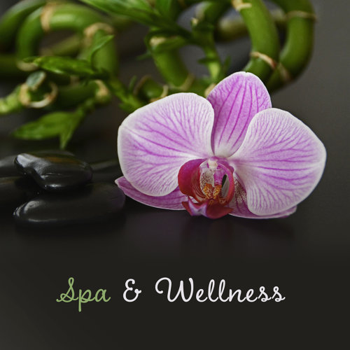 Spa & Wellness – Peaceful Music for Massage, Healing, Stress Relief, Spa Dreams, Zen Music, Lotus Folwer, Pure Relaxation, Calming Nature Sounds