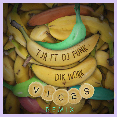 Dik Work (feat. DJ Funk) [Vices Remix]